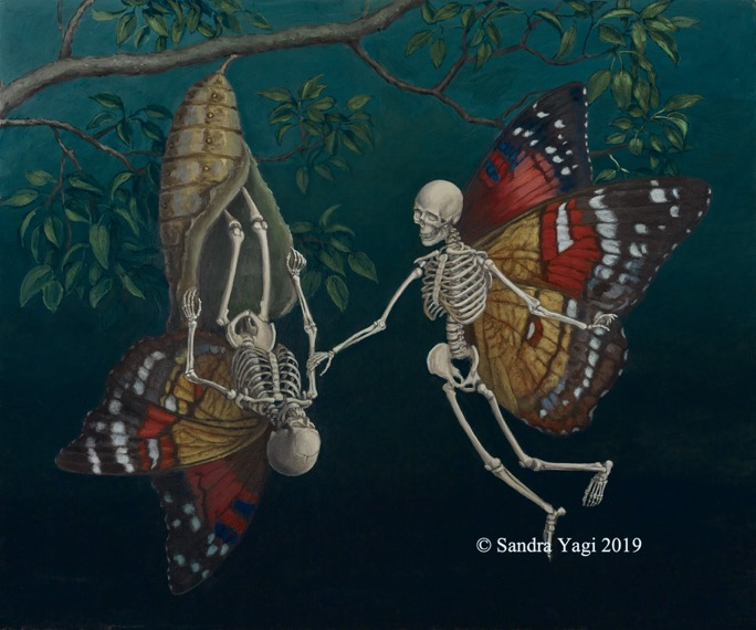Metamorphosis_20x24 CR